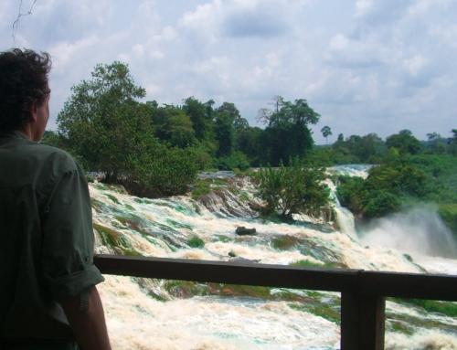 Vista sul fiume Ivindo