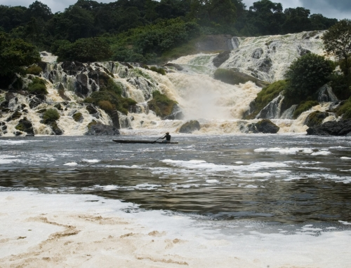Piroga sul fiume Ivindo